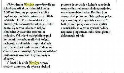 http://edhau.wz.cz/2010/Worsley4.jpg
